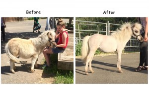 stormy-before-and-after